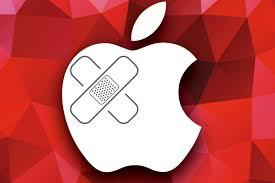 apple-repairing-digidoki
