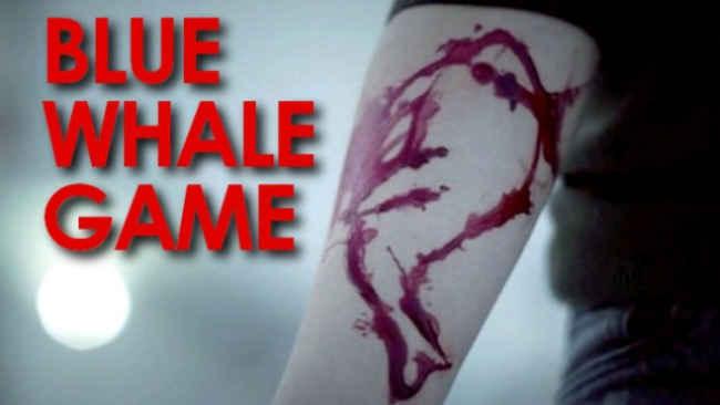 بازی نهنگ آبی یا نهنگ سفید ، وحشتناکتر از آنچه فکرش را بکنید